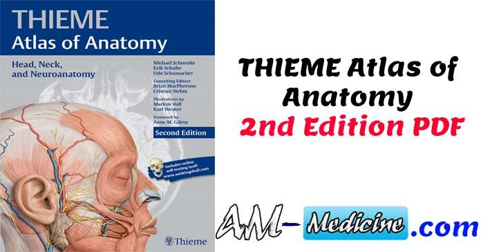 THIEME Atlas of Anatomy 2nd Edition PDF | PDF Free Medical