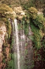goomburra queen mary falls