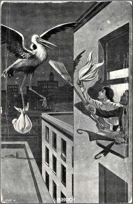 Mouhahaha !!!!!  - Vintage Bird Control.