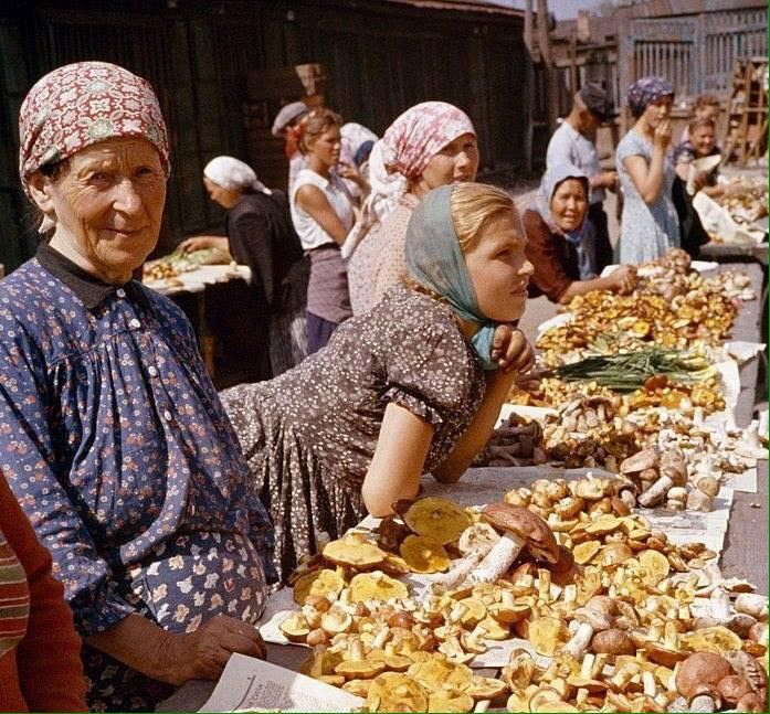 Mushrooms at the Danilovsky market. Moscow, USSR, 1959 ...