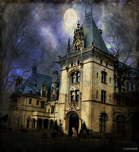 17 best images about lady biltmore the vanderbilts on for Is biltmore estate haunted