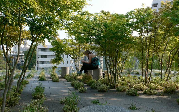 Roof  Garden Keio University - Michel Desvignes