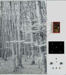 Δάσος ΙΙ