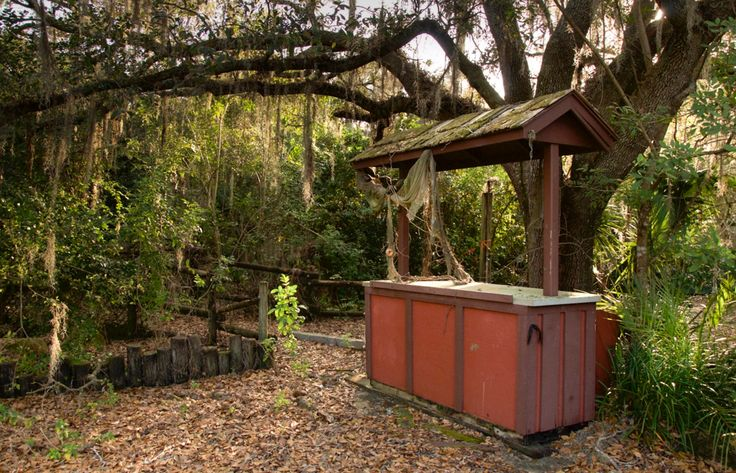 Photos give an inside look into a creepy, abandoned Disney water park - Houston Chronicle
