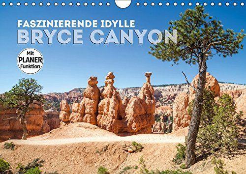 Faszinierende Idylle BRYCE CANYON (Wandkalender 2018 DIN ... https://www.amazon.de/dp/3669132473/ref=cm_sw_r_pi_dp_x_JNugAbS9CM6QT  #Kalender #2018 #Kalender2018 #Geschenk #Wandschmuck #Planer #Wandkalender #Sehenswürdigkeiten #Wahrzeichen #Fotografie #dekorativ #Fotografien #Reise #USA #Westküste #Landschaft #Wüste #Natur #Südwest #Prärie #Utah #BryceCanyon