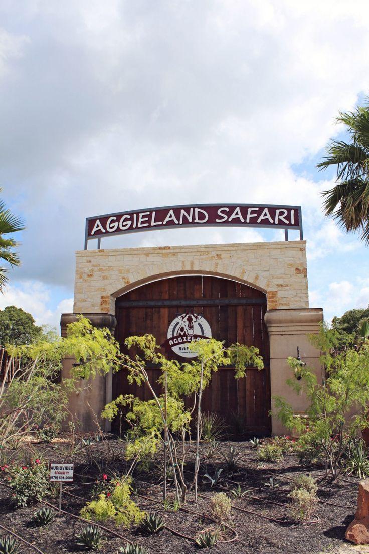 Aggieland Safari Adventure park, Safari, Safari adventure