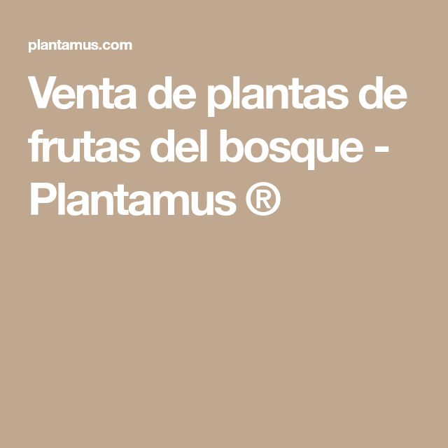 Venta de plantas de frutas del bosque - Plantamus ®