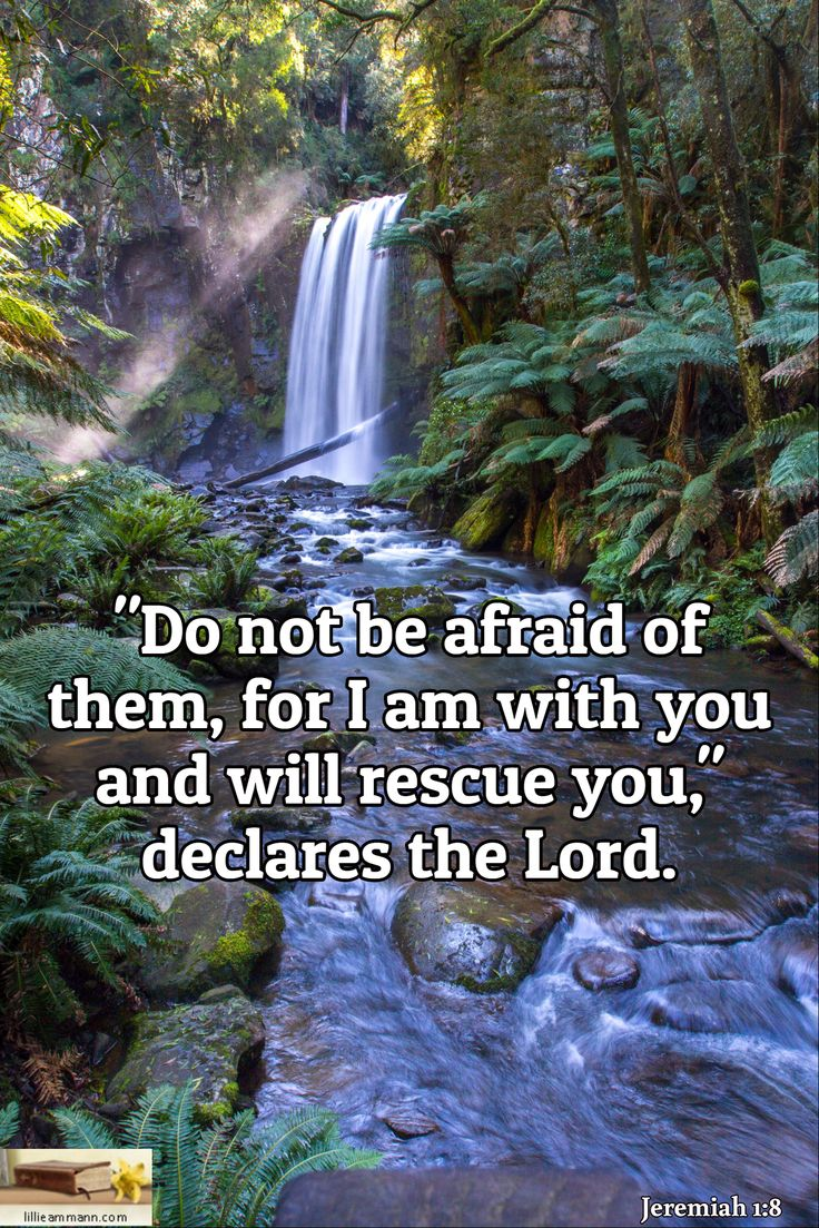 Bible Verses God S Love For Nature