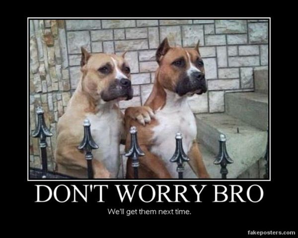 Dont Worry Funny Pics Pinterest