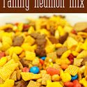 Family Reunion Snack Mix