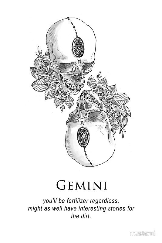 Gemini – Shitty Horoscopes Book XII: Obituaries | Photographic Print