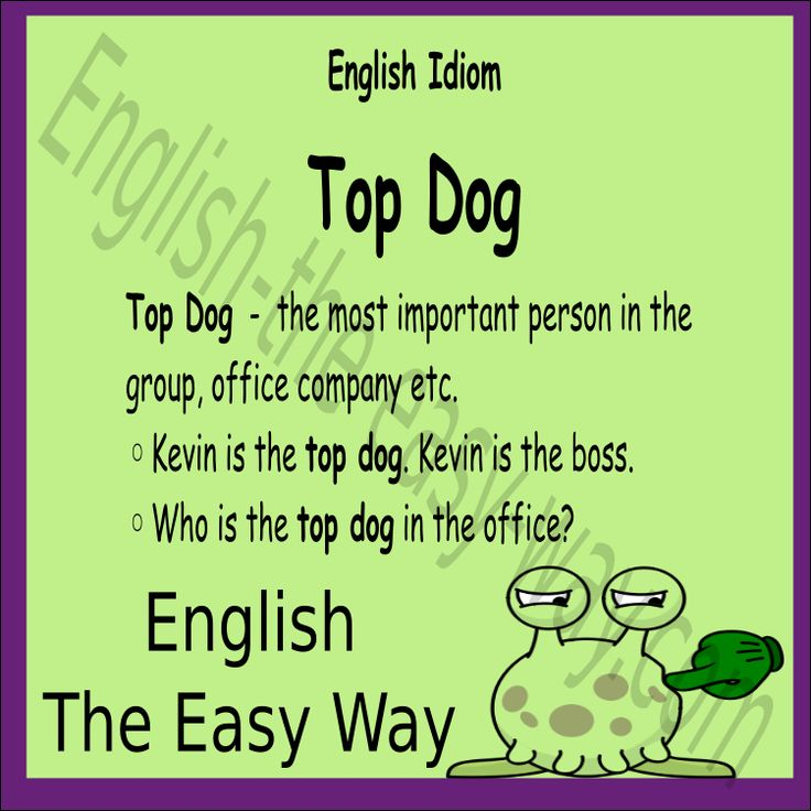 Work Idiom I am the __________ in the office. 1. top dog 2. boss 3. both #WorkIdiom #EnglishIdiom