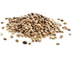 Semi e olio di canapa nell'alimentazione