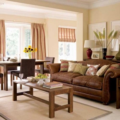 color schemes for living room with brown furniture