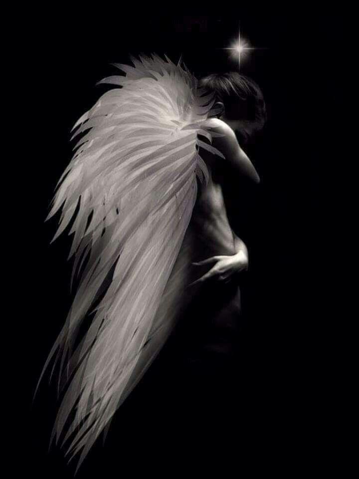 Картинки ангела с крыльями во тьме