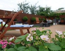 Aranżacje wnętrz - Ogród: na Słonecznej - Duży ogród za domem, styl minimalistyczny - kamila_lbn. Przeglądaj, dodawaj i zapisuj najlepsze zdjęcia, pomysły i inspiracje designerskie. W bazie mamy już prawie milion fotografii!