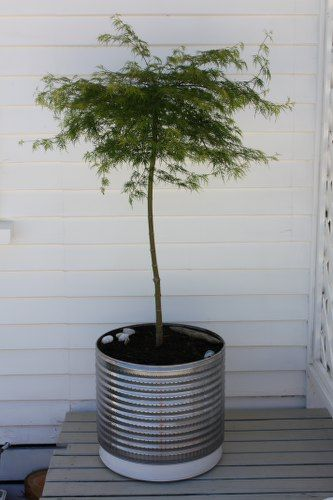 Turn that washing machine drum into an industrial chic planter. I never would have thought for a second to save the drum after replacing our washer, thankfully I still have access to it. I am going to grow a gorgeous tomato plant in it on my deck!