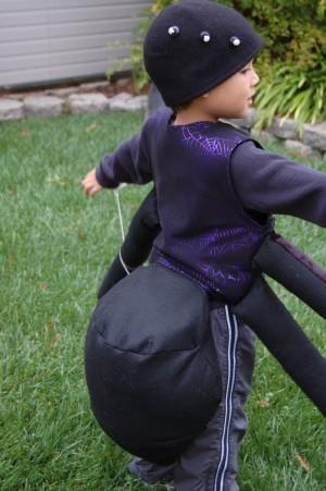 DIY Animal Costume : DIY Spider Halloween Costume
