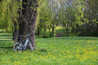 O szczęściu, poszukiwaniu inspiracji, pogoni za marzeniami...: Cyklista to człowiek złożony w połowie z ciała, a ...