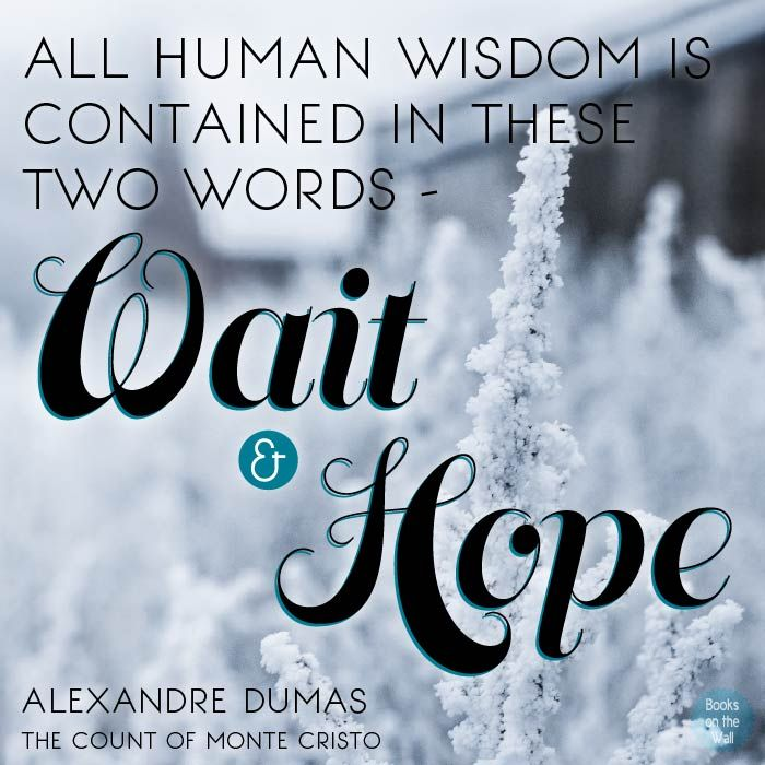 """""""All human wisdom is contained in the two words - Wait and Hope.""""   -Alexandre Dumas, The Count of Monte Cristo"""