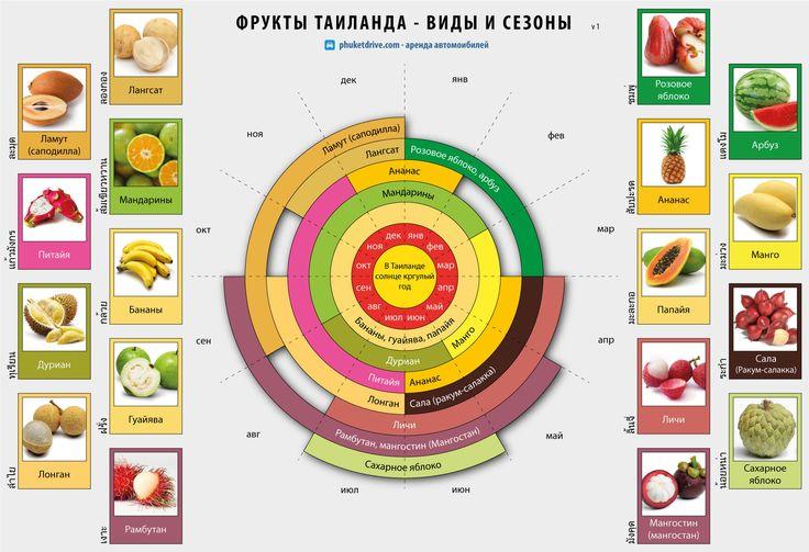 fruits thailand by season