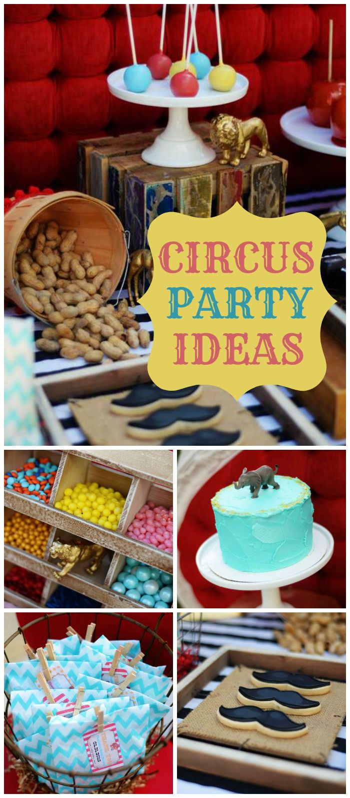 Best 25 adult circus party ideas on pinterest circus party circus birthday and circus theme - Carnival theme party for adults ...