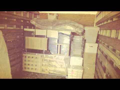 Los Angeles Local Moving Company - A rated movers. - YouTube