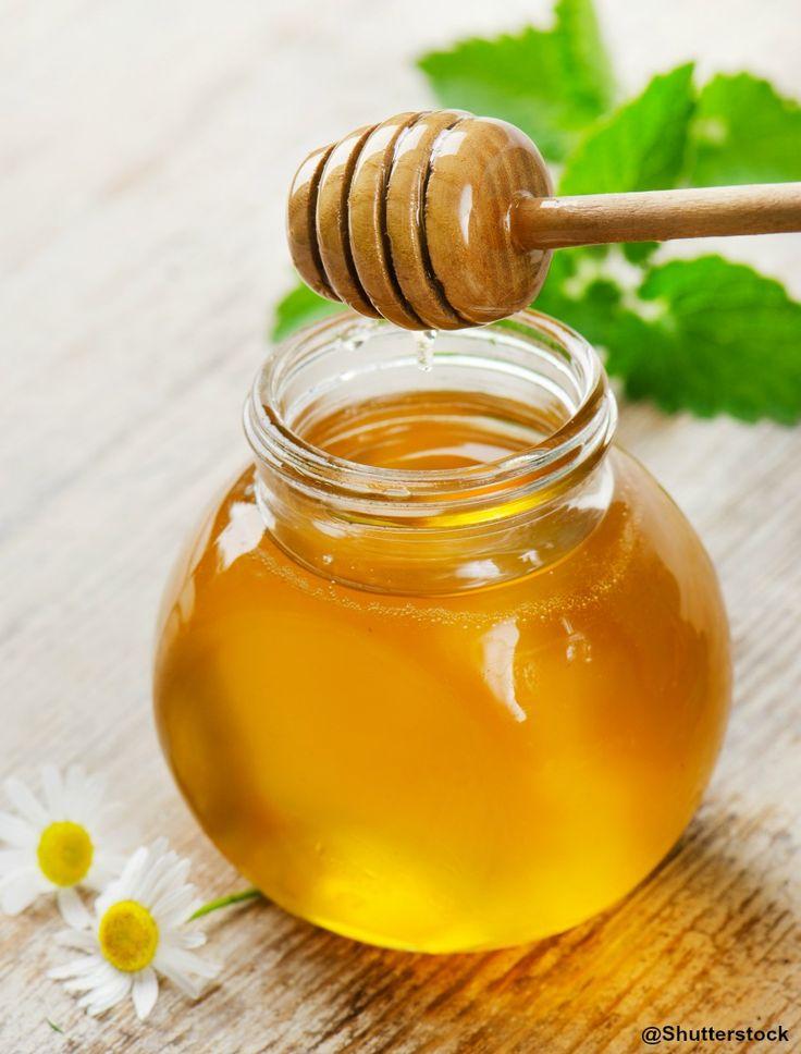 Bienfaits et utilisations du miel d'eucalyptus -