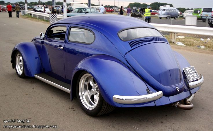 Animals For Gt Vw Beetle Custom Paint Vw Bugs Pinterest