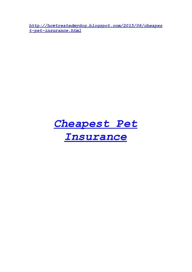 Cheapest pet insurance  All about Cheapest pet insurance