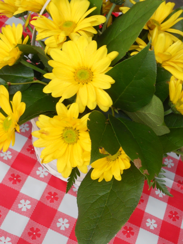 17 best images about picnic centerpieces on pinterest for Picnic food ideas for large groups