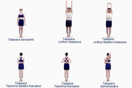 Tadasana Variations - Iyengar Yoga | Yoga Asana Practice ...