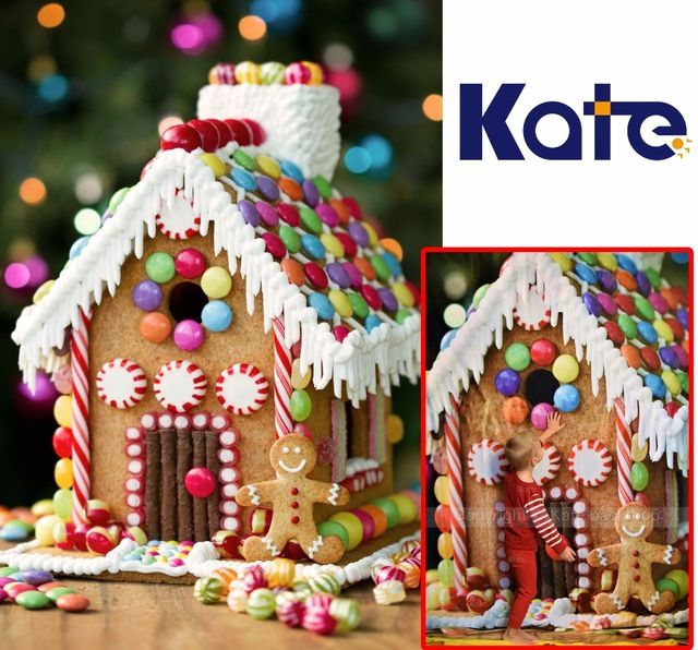 Image Result For Candy Shop Background Christmas Gingerbread House Gingerbread House Decorations Gingerbread House