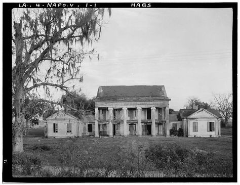 Woodlawn Plantation, State Highway 77, Napoleonville vicinity, Assumption Parish, LA  HABS 1930's
