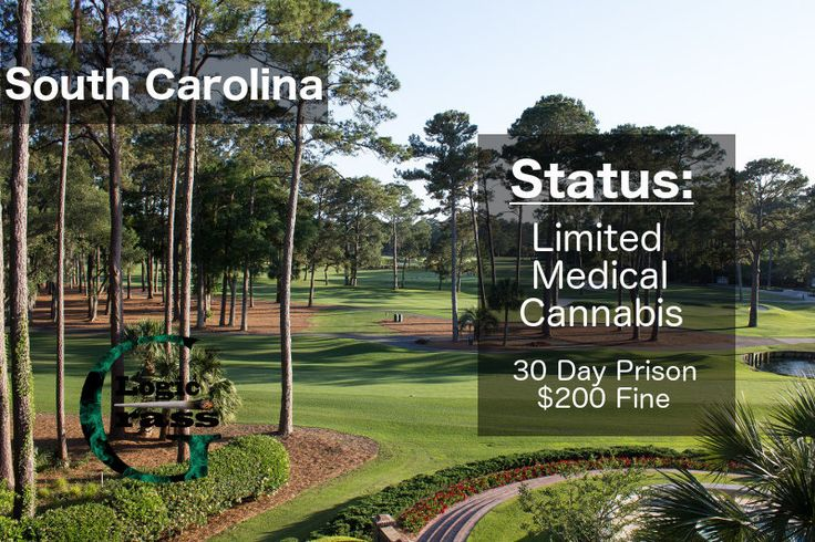 Check out the legal status of marijuana in South Carolina #marijuanalegalization #cannabiscommunity