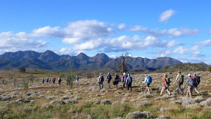 Walking the Heysen Trail towards Wilpena Pound, Flinders Ranges South Australia. https://www.facebook.com/robert.alcock.14