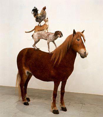 "Katarzyna Kozyra, ""Pyramid of Animals,"" installation, 1993. Courtesy: Zachęta National Gallery of Art."