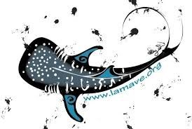 whale shark sketch - Google Search