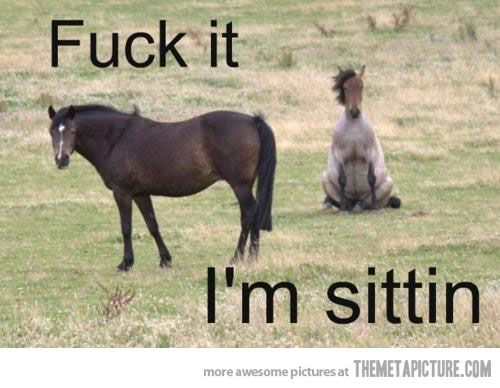 Lazy Horse Problems