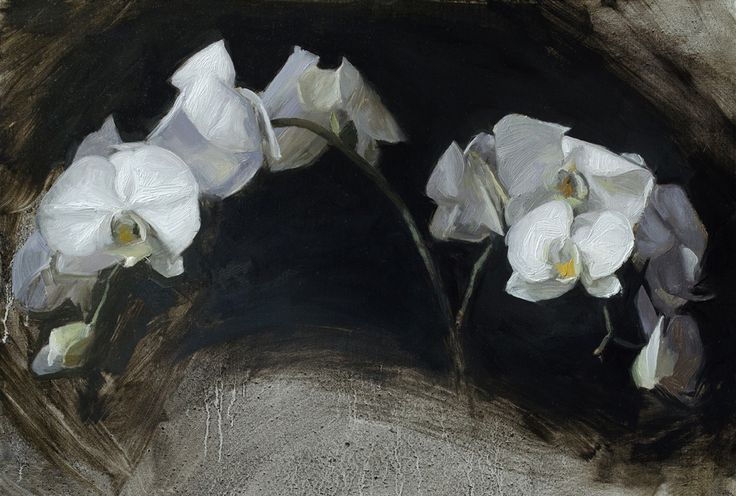 """Casey Childs """"Orchids"""" - 10.5x15, oil on linen - at Principle Gallery"""