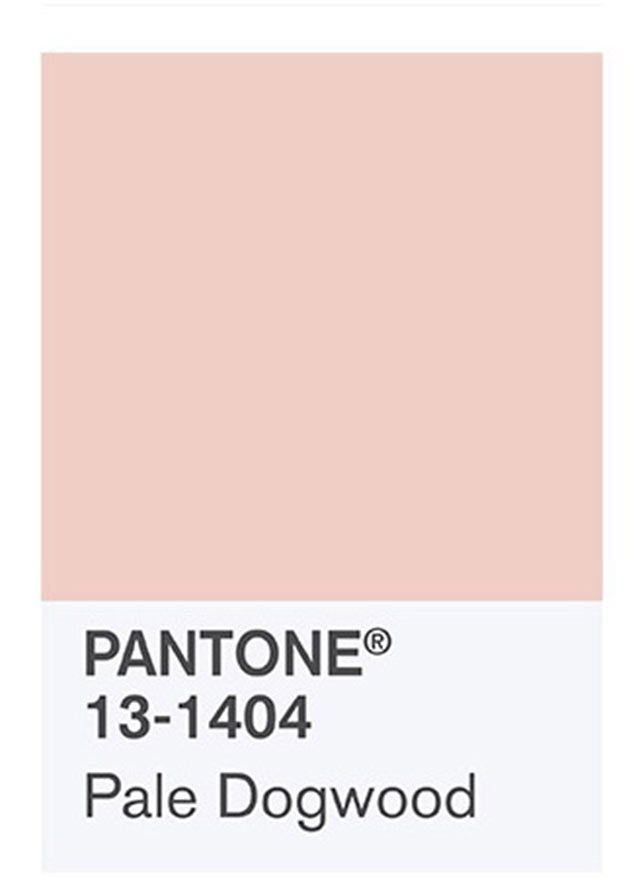 Also known as Millennial Pink.