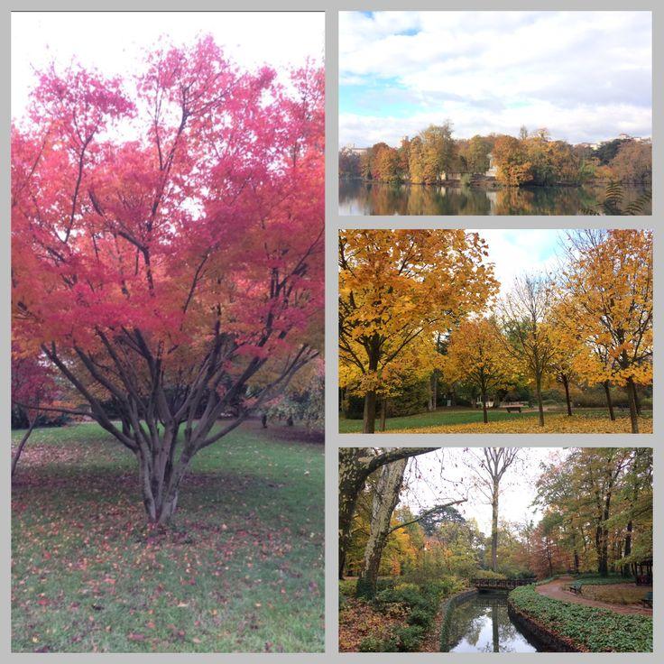 Autumn in parc de la tête d'or, lyon