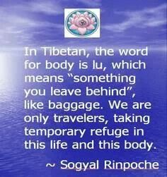 """in Tibetan, the word for body is lu, which means """"something you leave behind"""", like baggage. We are only travelers.... - Rinpoche #spiritual #quotes"""