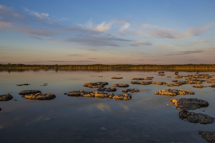 Lake Thetis looking East during the golden hour. Taken by Matthew Schneider.