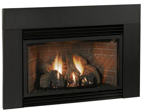 23 Best Gas Insert Firplaces Images On Pinterest Gas