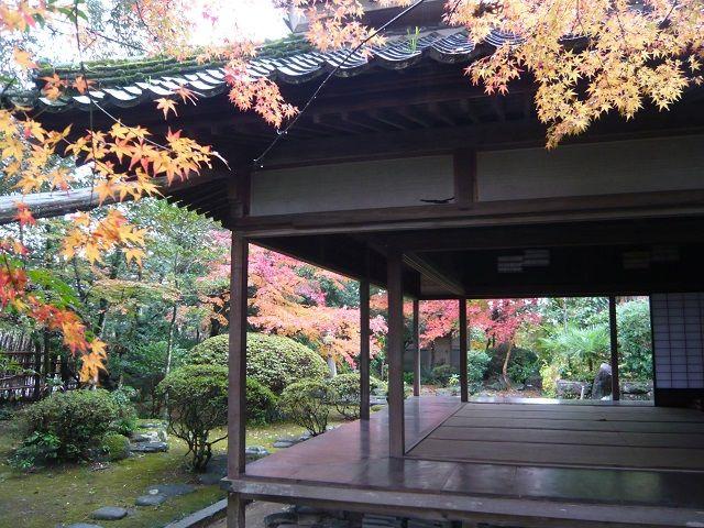 楠森堂のお庭。