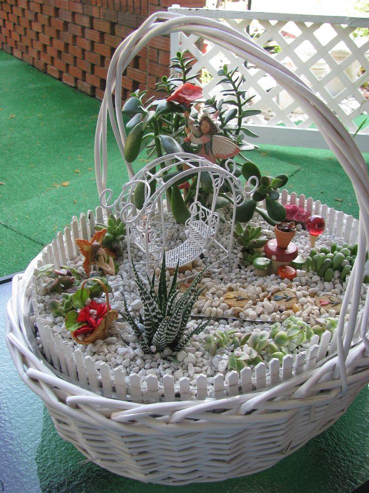 Best 25 miniature fairy gardens ideas on pinterest - Miniature plants for fairy gardens ...