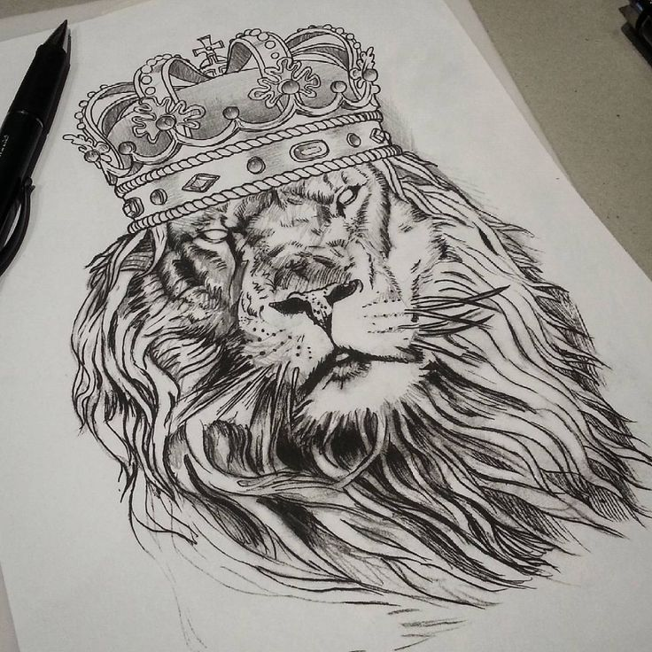 Image result for lion with crown drawing Lion tattoo