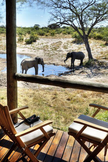 Savute Safari Lodge - Savute Marsh, Chobe National Park, Botswana