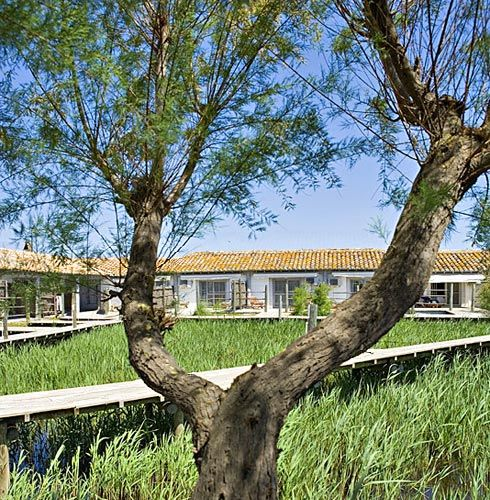 Les Arnelles gives guests of the hotel a close, personal view of the Camargue marsh.